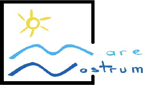 ONG Mare Nostrum